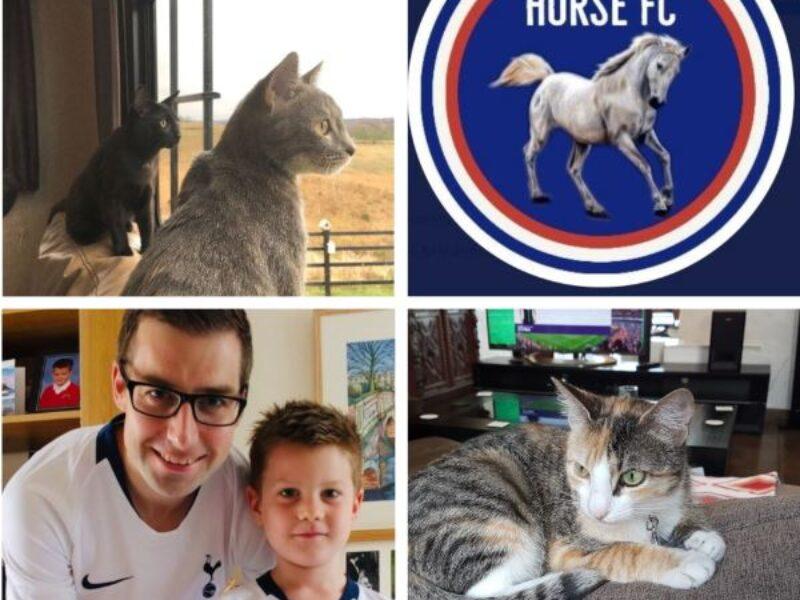 Fantasy Premier League GW32 – 4 FFGeek Contributors Teams Part 4 – includes a wildcard